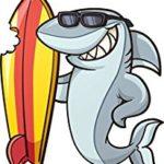 Акулы и серфинг